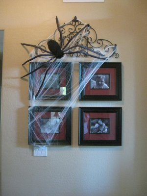 spider on wall for halloween