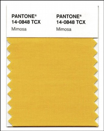 "The Color of 2009: Pantone Chooses ""Mimosa"""