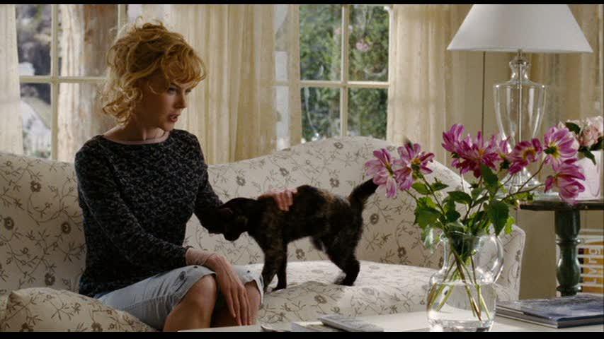 Nicole Kidman petting black cat on sofa