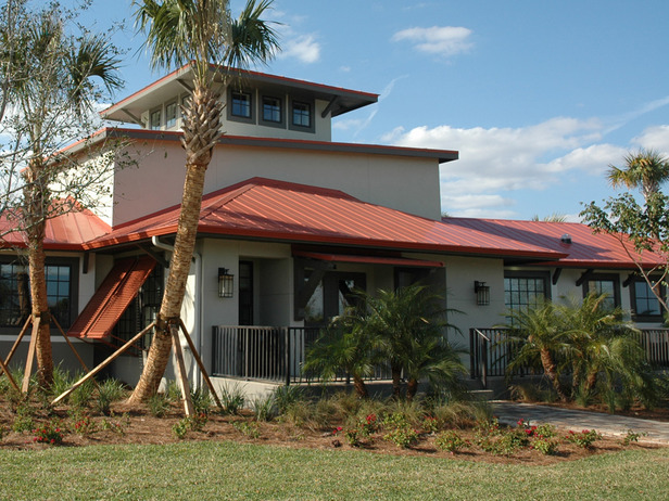 front exterior of HGTV's Green Home 2009 with palm tree in yard