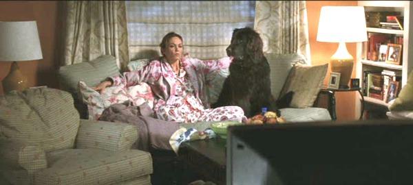 Diane Lane in Must Love Dogs