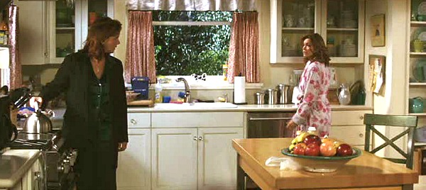 Diane Lane's bungalow kitchen Must Love Dogs 4