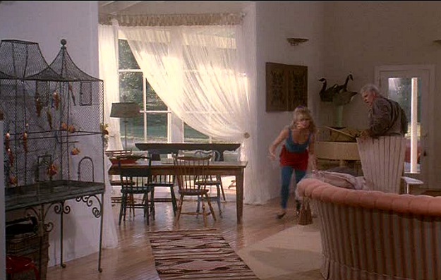 Housesitter movie-birdcage great room