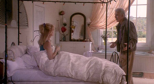 Housesitter movie house-bedroom