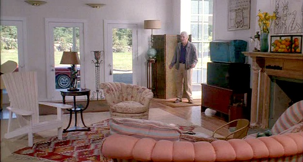 Housesitter movie house-great room 2