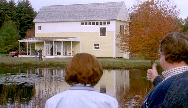 Housesitter movie side of yellow house on pond