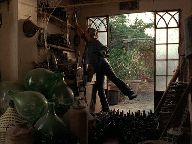Diane Lane doing inventory of wine bottles in shed