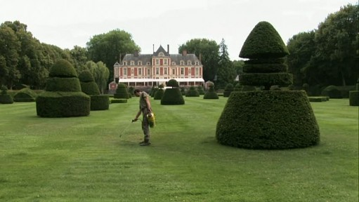 chateau-painting grass