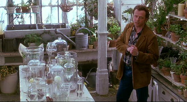 Aidan Quinn in the conservatory-Practical Magic