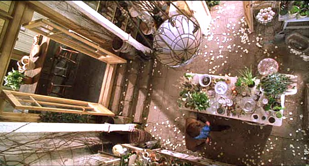 overhead view of conservatory in Practical Magic