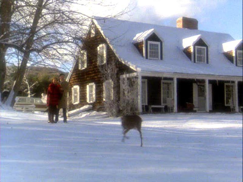 Funny Farm house Cue the Deer