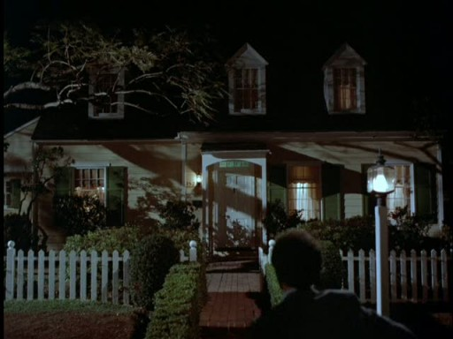 Mr Mom house-night