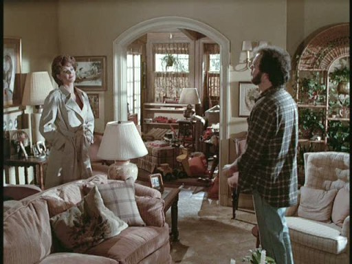 living room of the Mr. Mom house