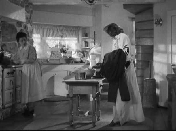 two women in kitchen of country house