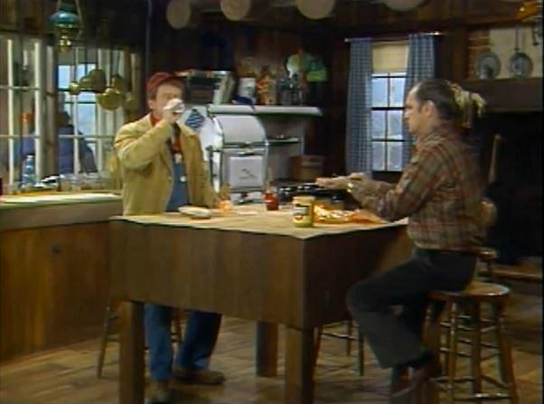 Newhart TV show kitchen 1