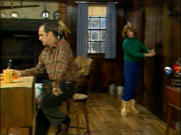 Newhart TV show kitchen 6