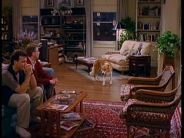 dog in living room of Mad About You apartment