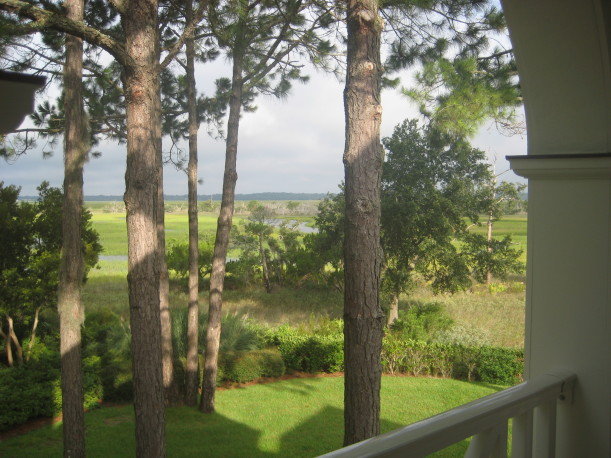 view of marsh from house