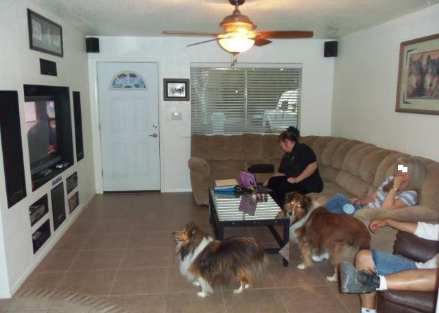 House Friendly Dogs
