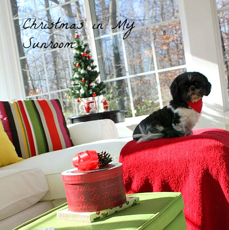 Christmas-in-my-Sunroom-Hooked-on-Houses