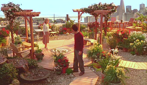 Mark Ruffalo-rooftop garden in Just Like Heaven