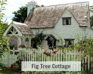 Fig-Tree-Cottage 325
