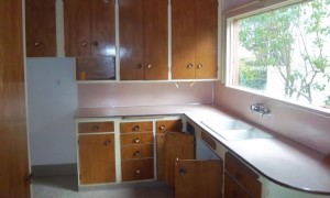 Belvidere kitchen before renovation