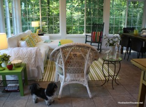 Maizie in sunroom summer 12