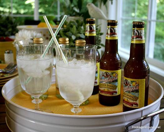 shandy in the sunroom
