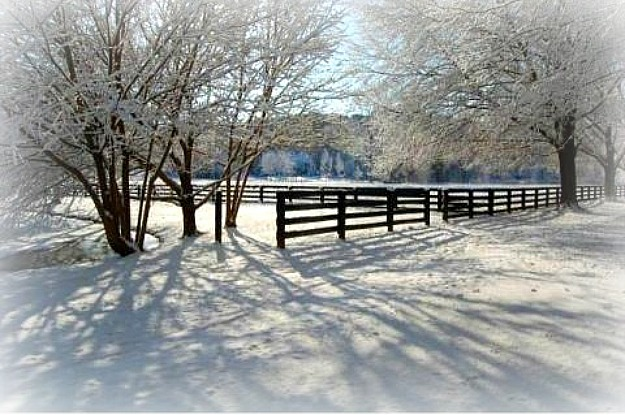 field and horse fence in the snow