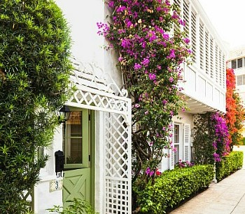 Decorating a Maisonette with a Small Garden