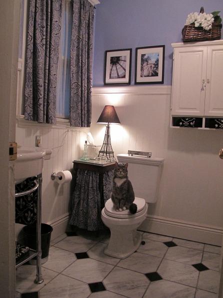 Sharon's Edwardian bathroom 2