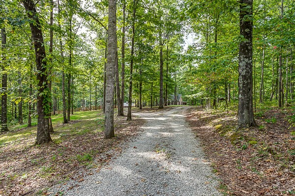 Storybook Cottage vacation rental Leipers Fork TN (2)