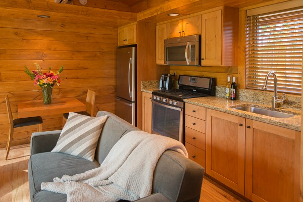cabin kitchenette with wood walls