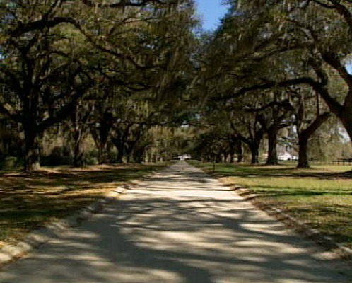 Inspiration for Twelve Oaks Drive in The Notebook