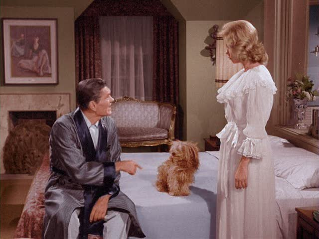 Darrin and Samantha's bedroom on Bewitched