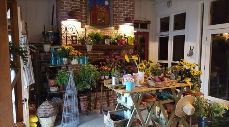 Potting room filled with plants and flowers