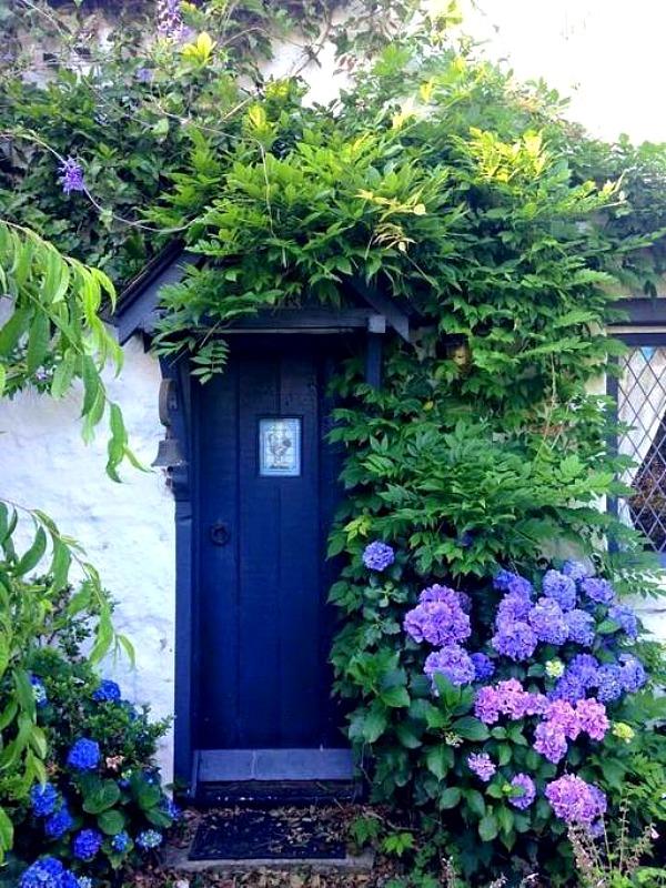 Fig Tree Cottage Cotswolds style in Australia hydrangeas