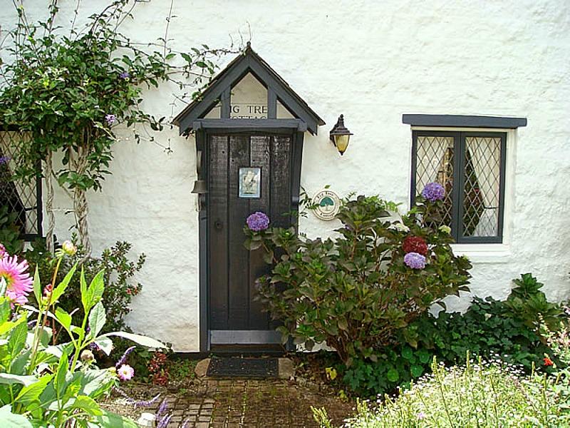 Fig Tree Cottage-front door