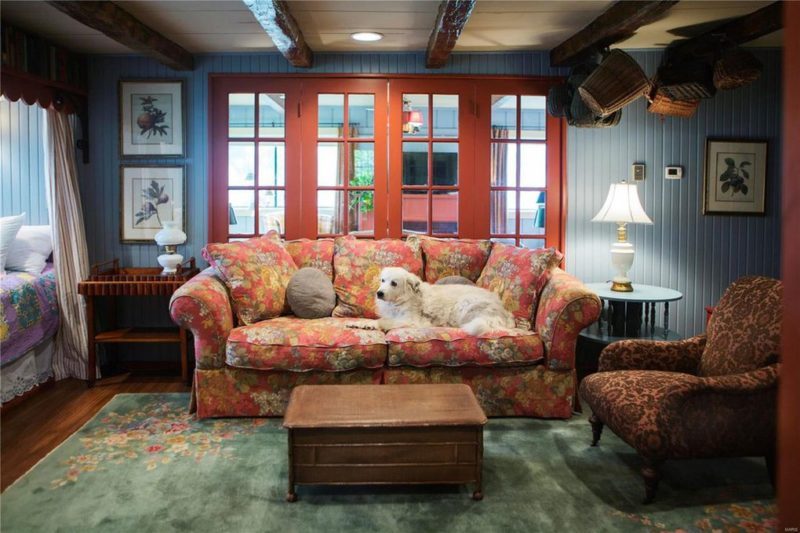 Living room with white dog sitting on floral sofa