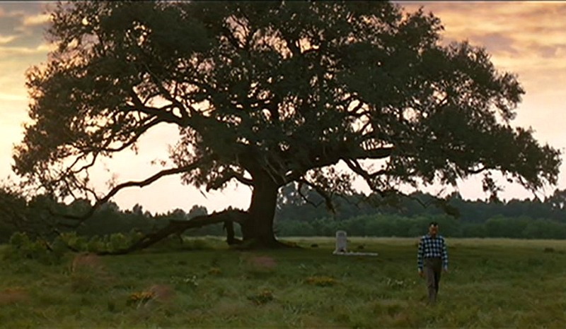 How They Built Forrest Gump S Big Old Southern House For The Movie Hooked On Houses