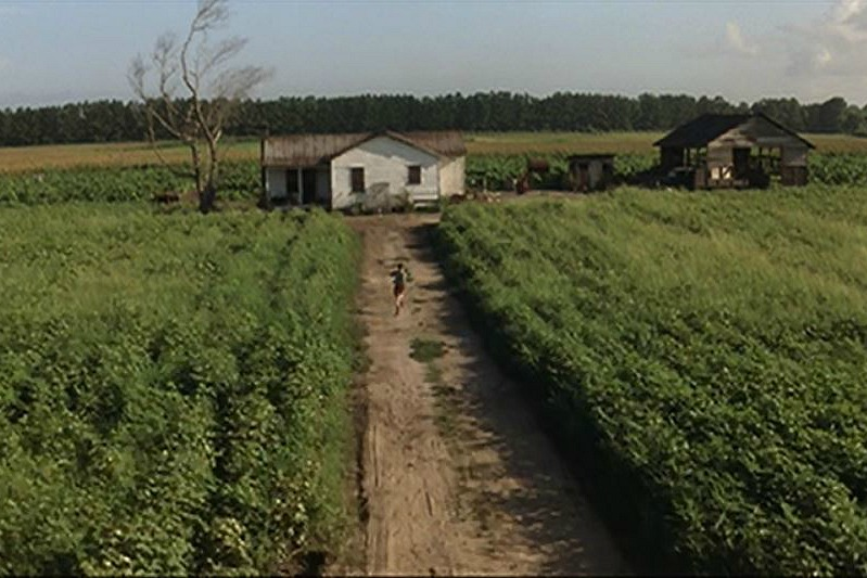 Jenny's old farmhouse and field Forrest Gump
