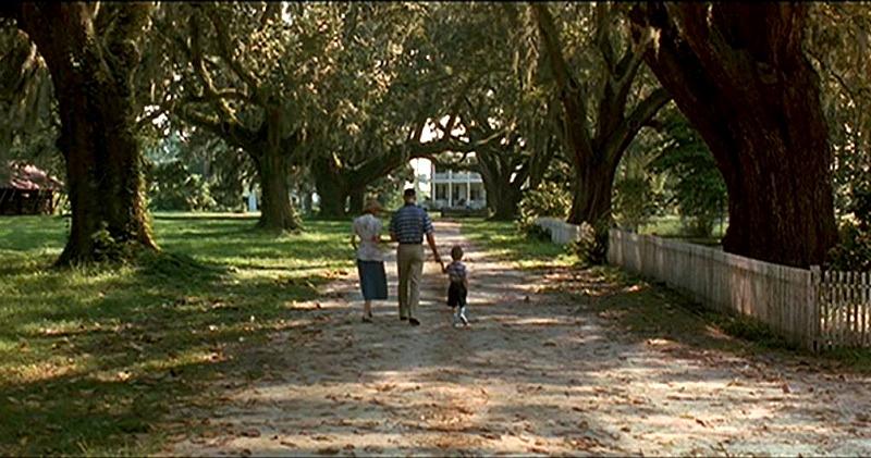 Oak Alley Forrest Gump Plantation Drive