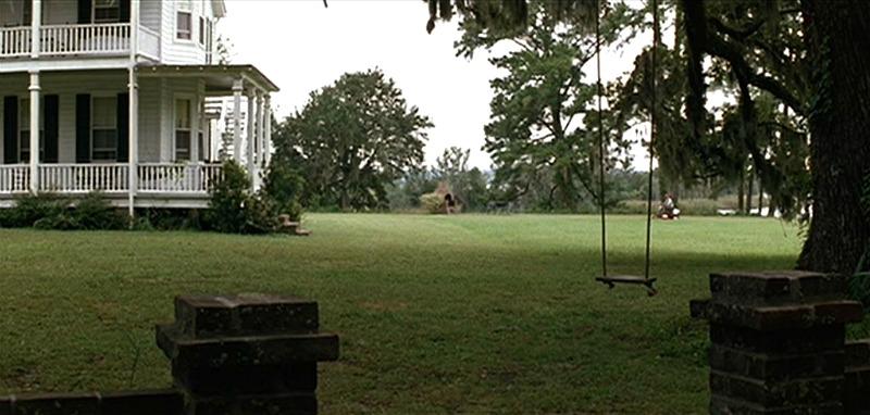 tree swing forrest gump