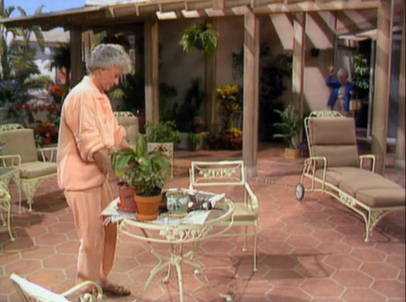 Back Patio of Golden Girls House