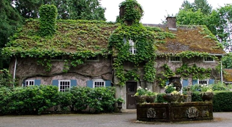 Foxglove Cottage in The Intruder movie